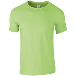 vaatteet Miehet Lyhythihainen t-paita Gildan SoftStyle Mint
