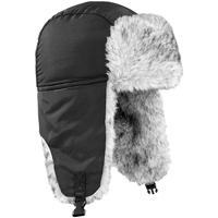 Asusteet / tarvikkeet Hatut Beechfield Sherpa Black