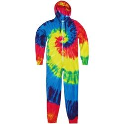 vaatteet Lapset Jumpsuits / Haalarit Colortone TD36B Rainbow