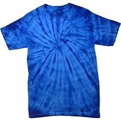 vaatteet Lyhythihainen t-paita Colortone Tonal Spider Royal