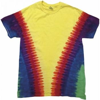 vaatteet Lyhythihainen t-paita Colortone TD05M Rainbow Vee