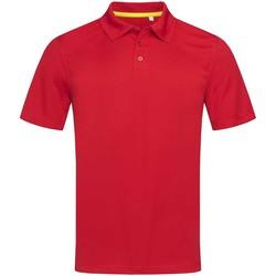 vaatteet Miehet Lyhythihainen poolopaita Stedman  Crimson Red