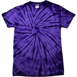 vaatteet Lapset Lyhythihainen t-paita Colortone Spider Spider Purple