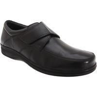 kengät Miehet Derby-kengät Roamers Fuller Black
