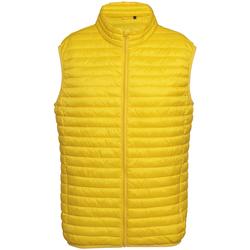 vaatteet Miehet Toppatakki 2786 Fineline Bright Yellow