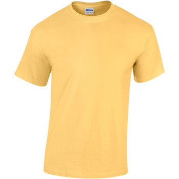 vaatteet Lapset Lyhythihainen t-paita Gildan 5000B Yellow Haze