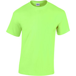 vaatteet Lapset Lyhythihainen t-paita Gildan 5000B Mint Green