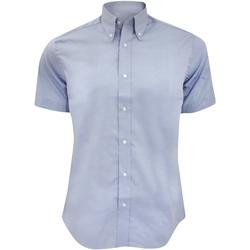 vaatteet Miehet Lyhythihainen paitapusero Kustom Kit KK187 Light Blue