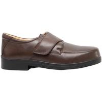 kengät Miehet Mokkasiinit Roamers  Brown