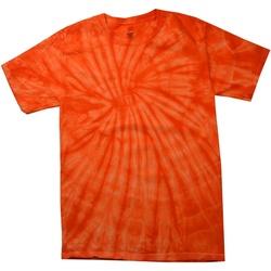 vaatteet Miehet Lyhythihainen t-paita Colortone Tonal Spider Orange