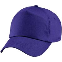 Asusteet / tarvikkeet Lapset Lippalakit Beechfield BC10B Purple