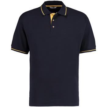vaatteet Miehet Lyhythihainen poolopaita Kustom Kit KK606 Navy/Sun Yellow
