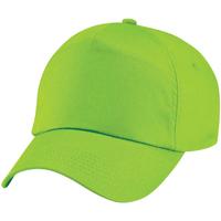 Asusteet / tarvikkeet Lippalakit Beechfield B10 Lime Green