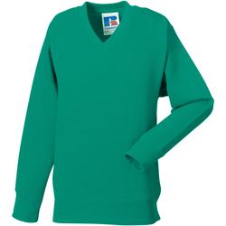 vaatteet Lapset Svetari Jerzees Schoolgear 272B Winter Emerald
