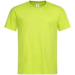 vaatteet Miehet Lyhythihainen t-paita Stedman  Bright Lime