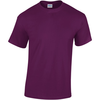 vaatteet Lapset Lyhythihainen t-paita Gildan 5000B Purple