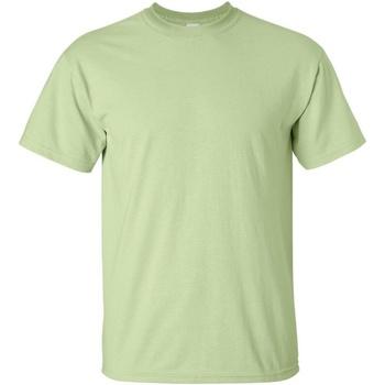 vaatteet Miehet Lyhythihainen t-paita Gildan Ultra Pistachio