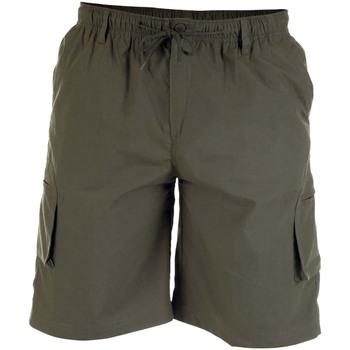 vaatteet Miehet Shortsit / Bermuda-shortsit Duke  Khaki