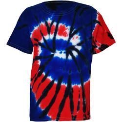 vaatteet Lapset Lyhythihainen t-paita Colortone TD02B Independence