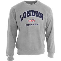 vaatteet Svetari Universal Textiles  Sport Grey