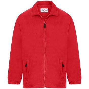 vaatteet Miehet Fleecet Absolute Apparel  Red