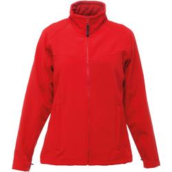 vaatteet Naiset Fleecet Regatta TRA645 Classic Red/Seal Grey