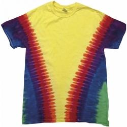 vaatteet Lapset Lyhythihainen t-paita Colortone TD05B Rainbow Vee
