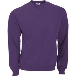 vaatteet Miehet Svetari B And C WUI20 Radiant Purple