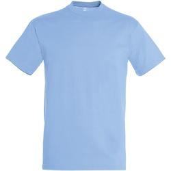 vaatteet Miehet Lyhythihainen t-paita Sols 11380 Sky Blue
