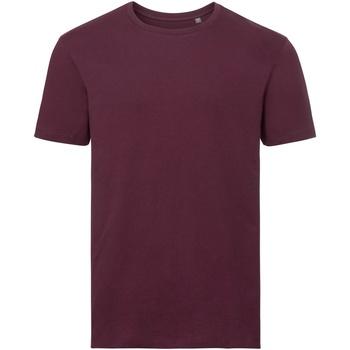 vaatteet Miehet Lyhythihainen t-paita Russell R108M Burgundy