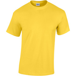 vaatteet Lapset Lyhythihainen t-paita Gildan 5000B Daisy