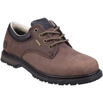 kengät Miehet Derby-kengät Cotswold  Crazyhorse