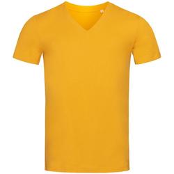 vaatteet Miehet Lyhythihainen t-paita Stedman Stars  Indian Yellow
