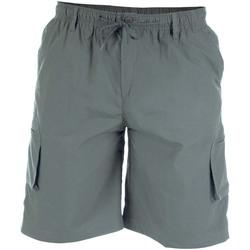 vaatteet Miehet Shortsit / Bermuda-shortsit Duke  Grey