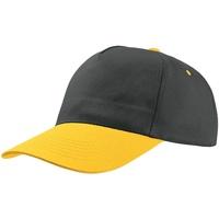 Asusteet / tarvikkeet Lippalakit Atlantis  Navy/Yellow