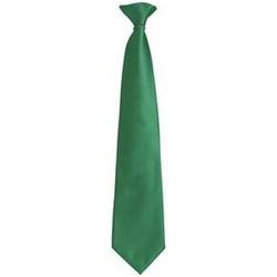 vaatteet Miehet Solmiot ja asusteet Premier PR785 Emerald