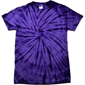 vaatteet Lyhythihainen t-paita Colortone Tonal Spider Purple
