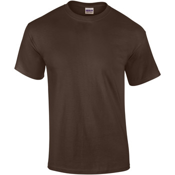 vaatteet Miehet Lyhythihainen t-paita Gildan Ultra Dark Chocolate