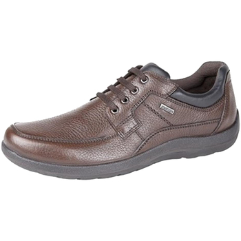 kengät Miehet Derby-kengät Imac  Brown