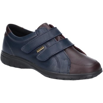 kengät Naiset Matalavartiset tennarit Cotswold  Navy/Brown