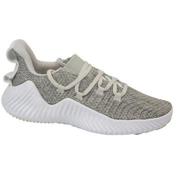 kengät Naiset Fitness / Training adidas Originals Alphabounce Trainer Harmaat