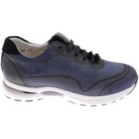 kengät Naiset Vaelluskengät Calzaturificio Loren CLORA1068bl blu