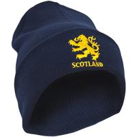 Asusteet / tarvikkeet Miehet Pipot Scotland  Navy