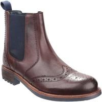kengät Miehet Bootsit Cotswold  Brown
