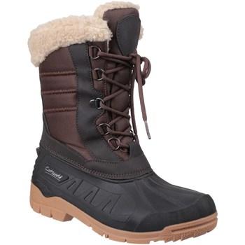 kengät Naiset Talvisaappaat Cotswold  Brown