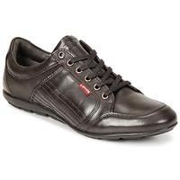 kengät Miehet Derby-kengät Levi's TOULON Brown