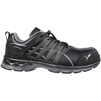 kengät Miehet Turvakenkä Puma  Black