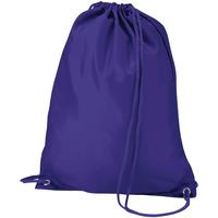 laukut Lapset Urheilulaukut Quadra QD17 Purple