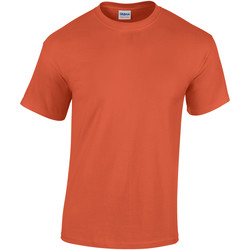 vaatteet Miehet Lyhythihainen t-paita Gildan Heavy Sunset