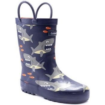 kengät Pojat Kumisaappaat Cotswold  Shark